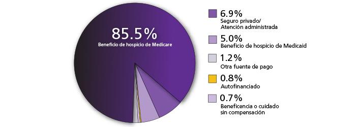 Un gráfico de torta donde se muestra quién paga el cuidado de hospicio
