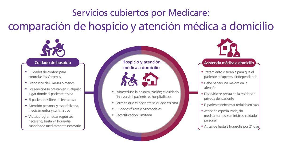 Un gráfico que describe la asistencia médica en el hospicio y en el hogar